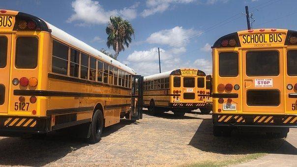 Autobús, La Escuela, Autobús Escolar